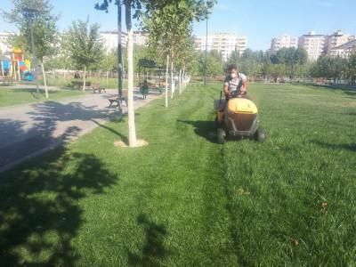 Park ve Bahçeler Müdürlüğümüz Park Bakım Ve Revize Çalışmalarını Sürdürüyor.